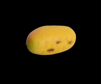 MANGO  GEEL 12 cm