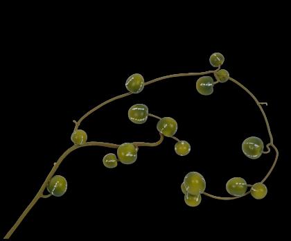 GARLAND PUMPKIN GREEN  126 CM