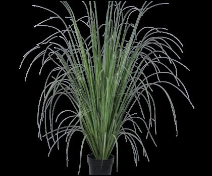 GRAS I/POT GROEN 152 cm