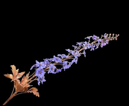 DELPHINIUM SPRAY GOLD/BLUE  128 CM