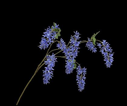 WISTERIA SPRAY BLUE  131 CM