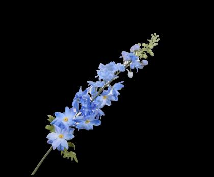 DELPHINIUM  BLUE  99 CM