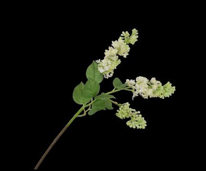 LILAC SPRAY WHITE  88 CM
